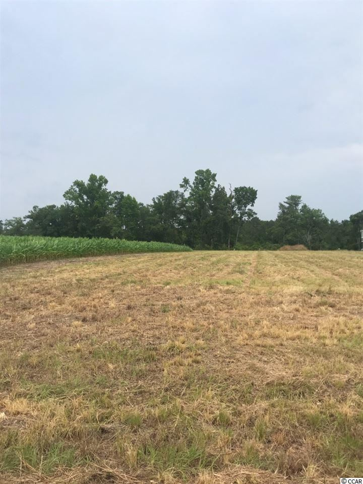 Lot 16 Old Camp Rd., Salters, SC, 29590, Not within a Subdivision Home For Sale