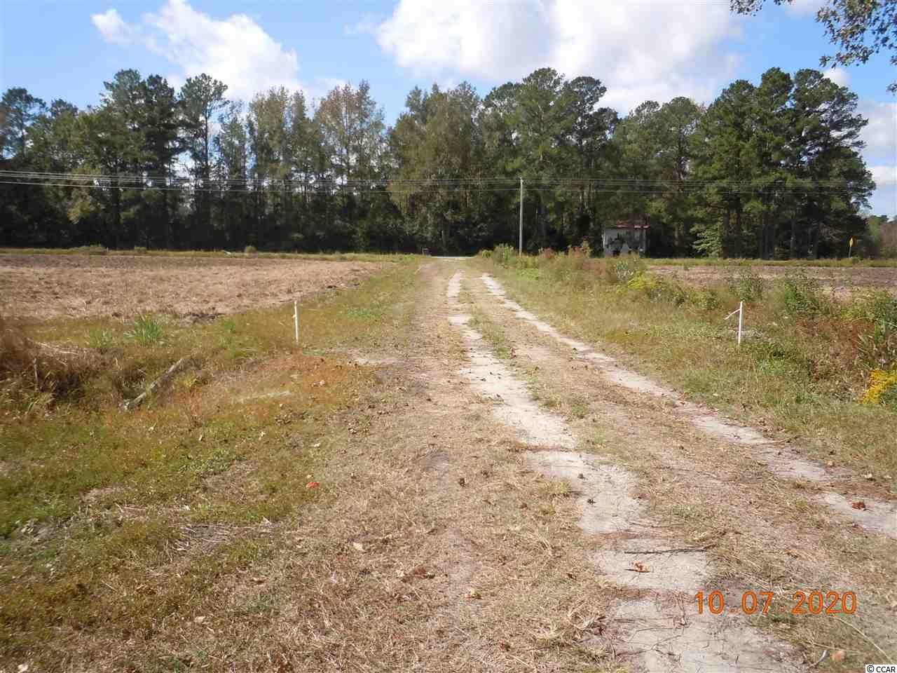 90 Longs Trail, Nakina, NC, 28455, Not within a Subdivision Home For Sale
