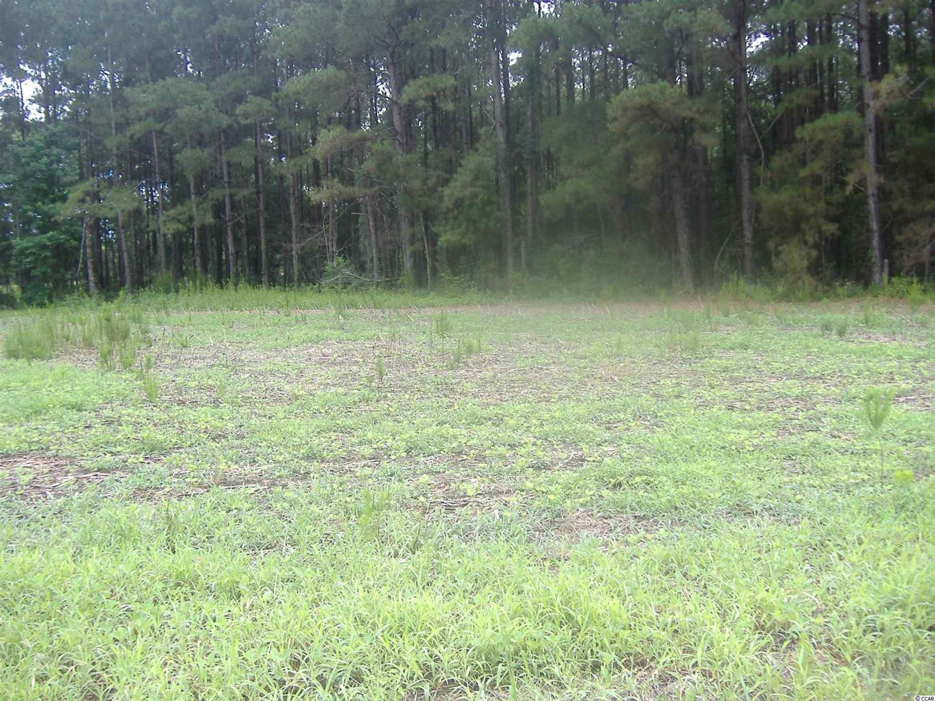 TBD Tampa Ln., Green Sea, SC, 29545, Not within a Subdivision Home For Sale