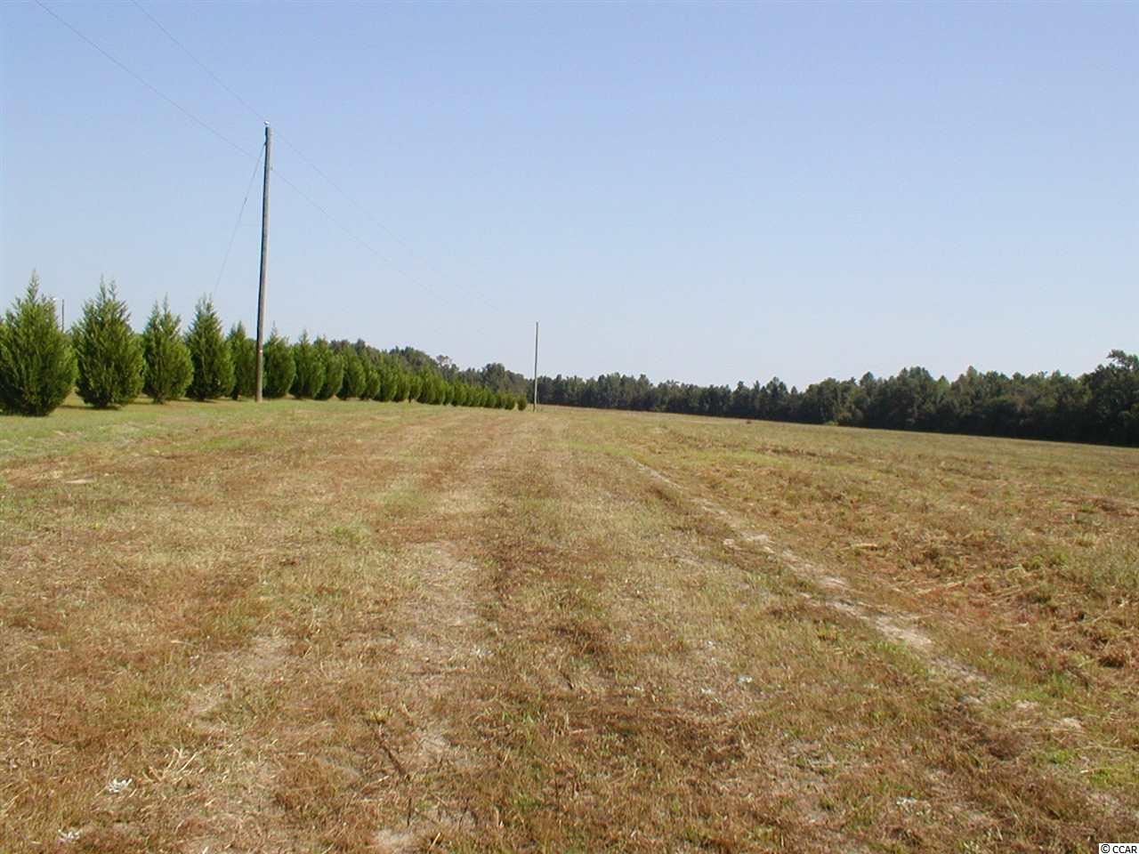 Bartells Rd., Lake City, SC, 29560, Not within a Subdivision Home For Sale