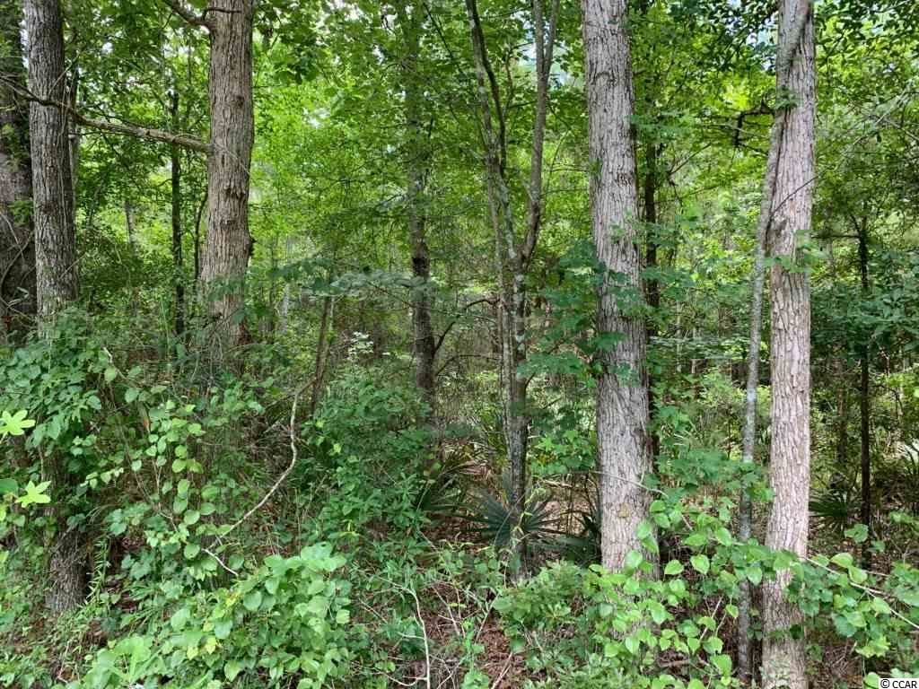 11 AC County Line Rd., Nesmith, SC, 29580, Not within a Subdivision Home For Sale