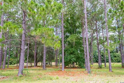 Photo of 1457 Whooping Crane Dr., Conway, SC 29526 (MLS # 1915495)