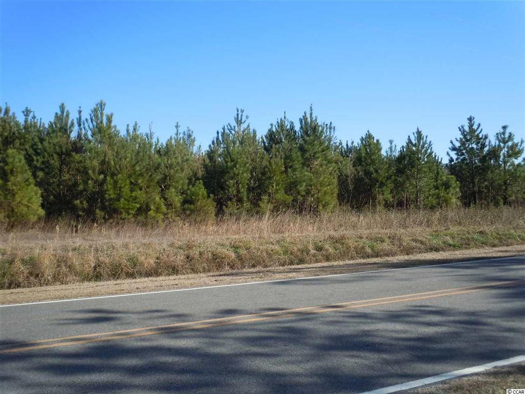 1465 Wright Rd., Tabor City, NC, 28463, Not within a Subdivision Home For Sale