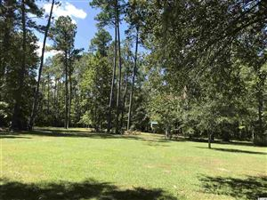 Photo of 5.4 ac South Island Rd., Georgetown, SC 29440 (MLS # 1920509)