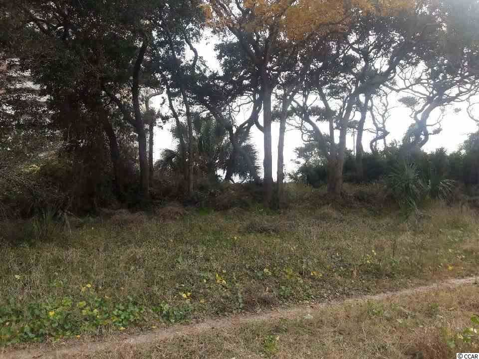 2810 1st Ave. S, Atlantic Beach, SC, 29582, Not within a Subdivision Home For Sale