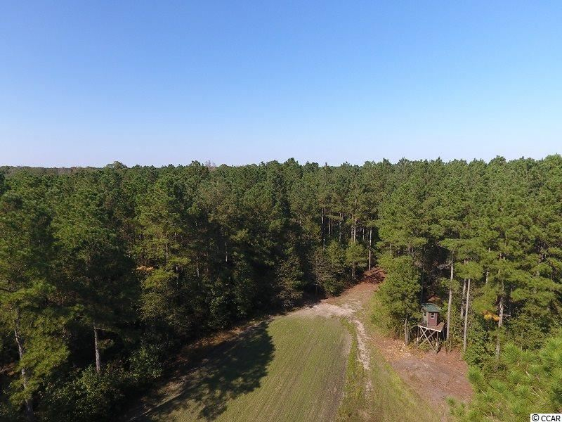 0 Highway 210, Garland, NC, 28441, Not within a Subdivision Home For Sale