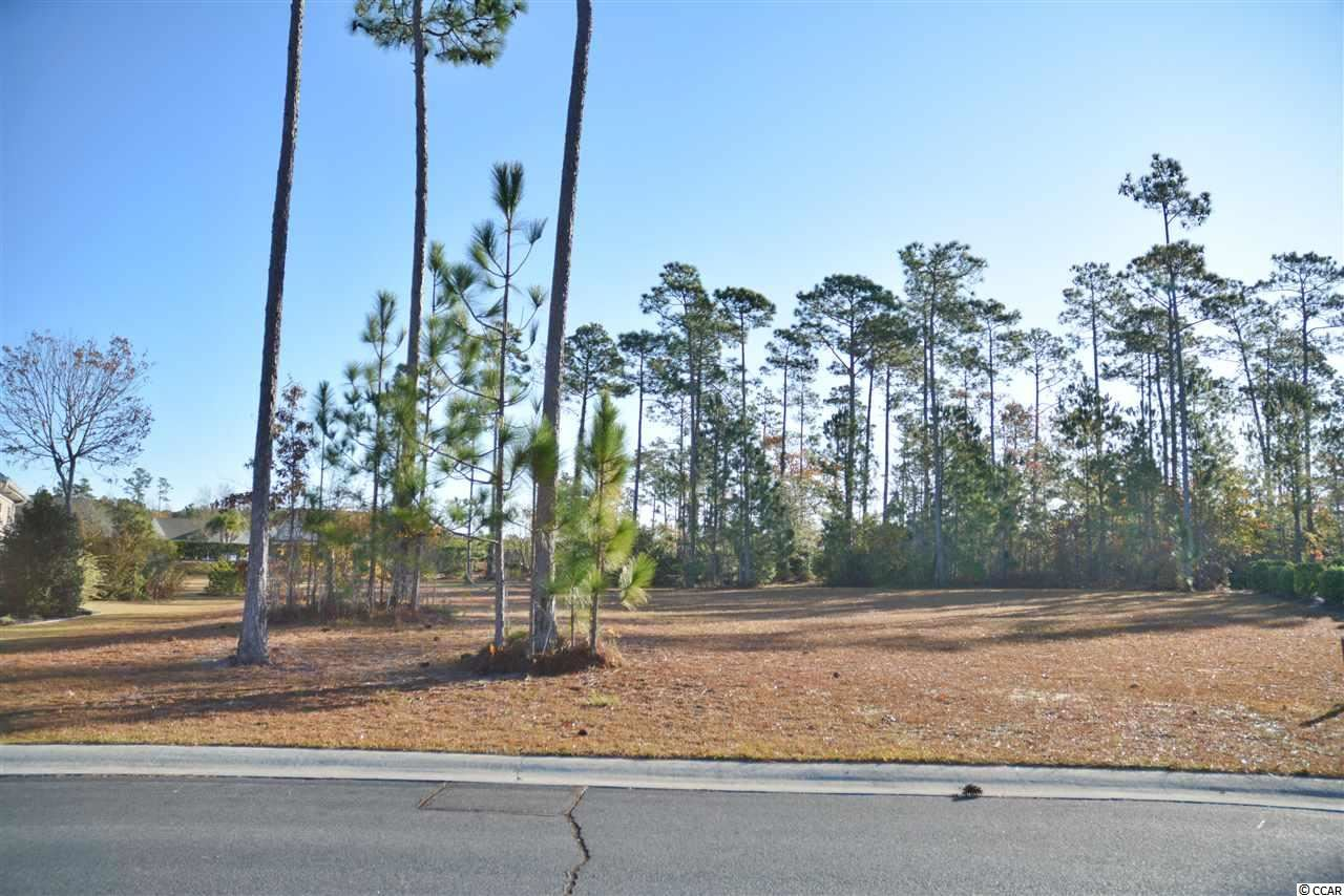 1175 Sabel Loop SE, Bolivia, NC, 28422, Palmetto Creek Home For Sale