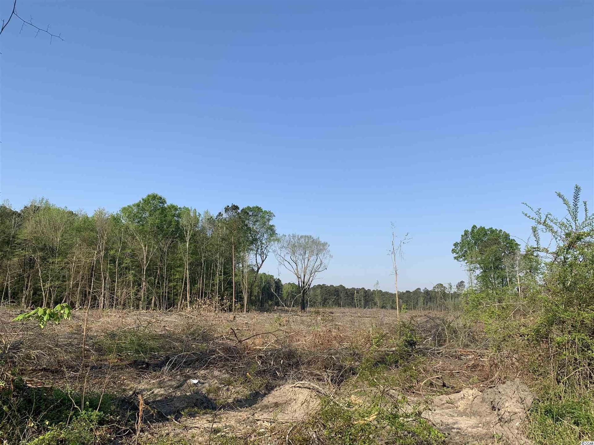 26.5 Pine Tree Ln., Greeleyville, SC, 29056, Not within a Subdivision Home For Sale