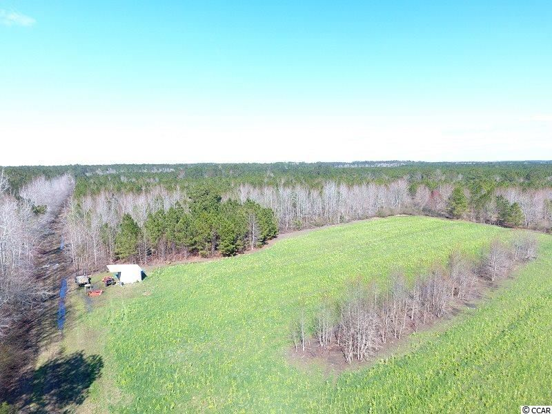 0 Cherry Grove Rd., Cerro Gordo, NC, 28430, Not within a Subdivision Home For Sale