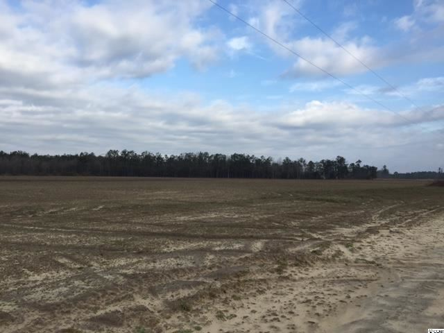 178 Acs Highway 378, Johnsonville, SC, 29555, Not within a Subdivision Home For Sale