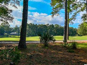 Photo of 138 Turtle Creek Dr., Pawleys Island, SC 29585 (MLS # 1821554)