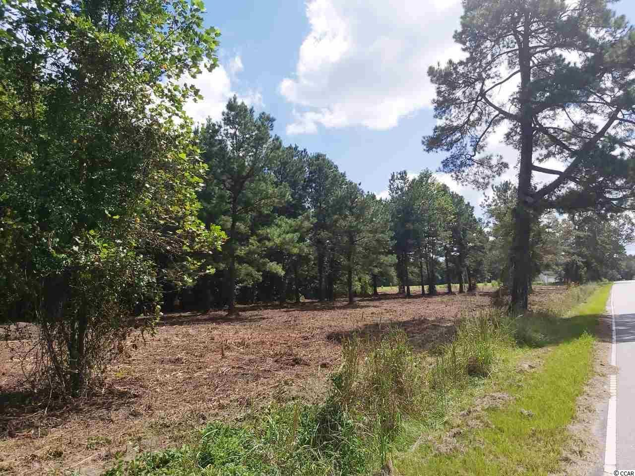 TBD Dog Bluff Rd., Galivants Ferry, SC, 29544, Not within a Subdivision Home For Sale