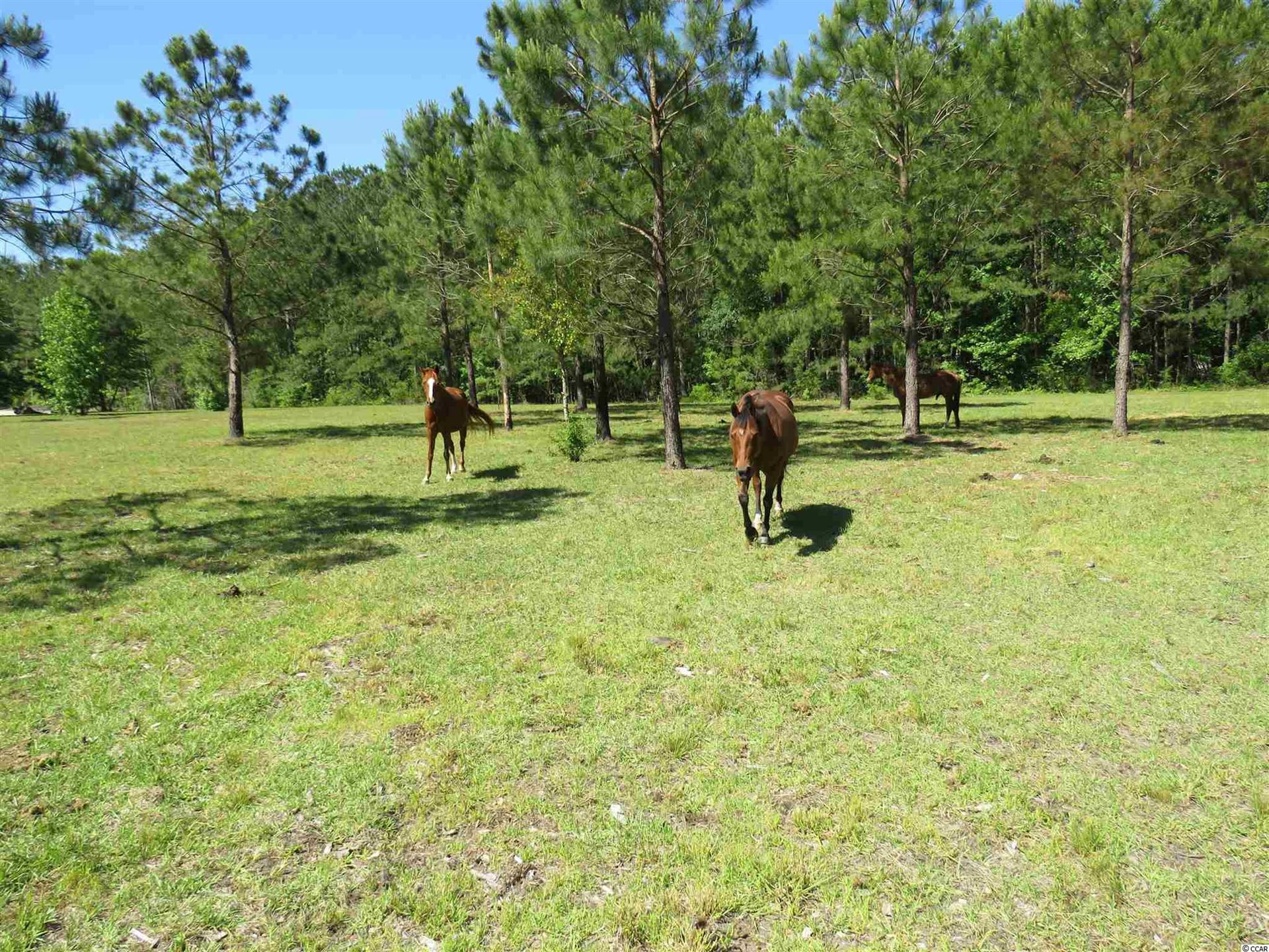 4011 Thomas Rd., Little River, SC, 29566, Not within a Subdivision Home For Sale