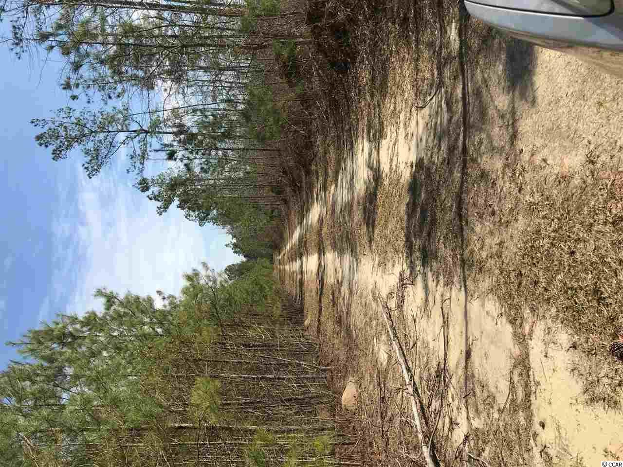 TBD Williamson Rd., Hemingway, SC, 29554, Not within a Subdivision Home For Sale