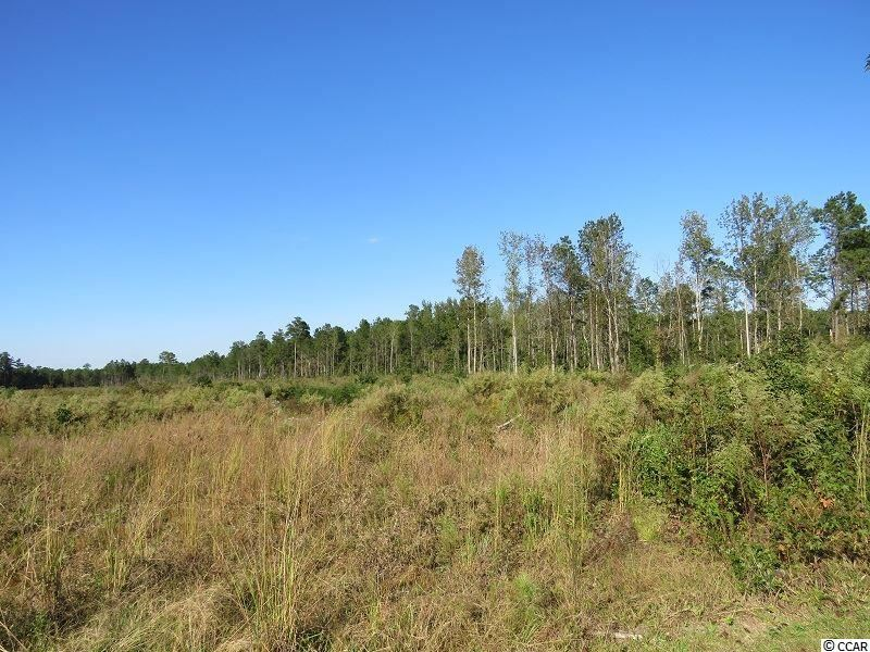 Old Lumberton Rd., Whiteville, NC, 28472, Not within a Subdivision Home For Sale