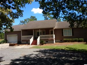 Photo of 90 Johnny River Rd., Georgetown, SC 29440 (MLS # 1920586)
