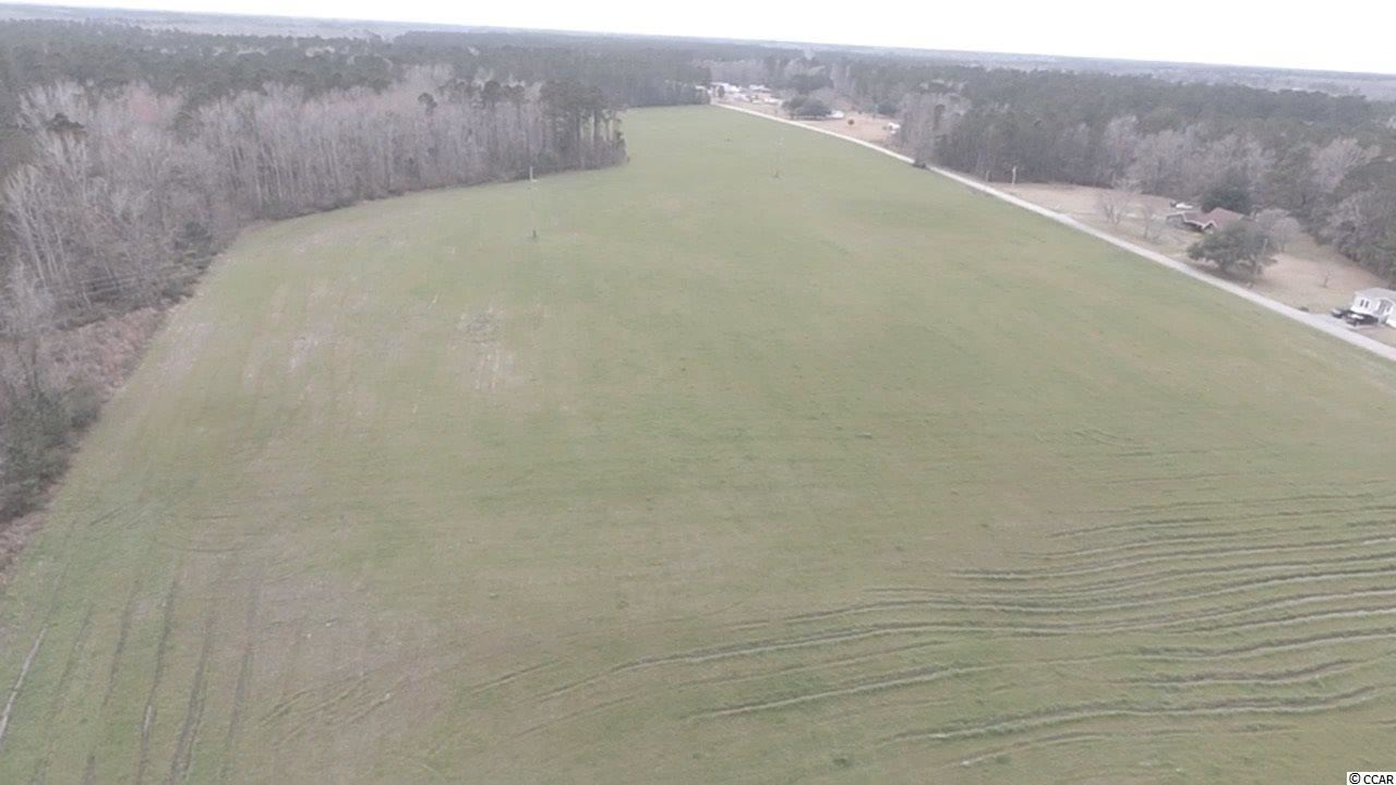 18 Acres Highway 521, Andrews, SC, 29510, Not within a Subdivision Home For Sale