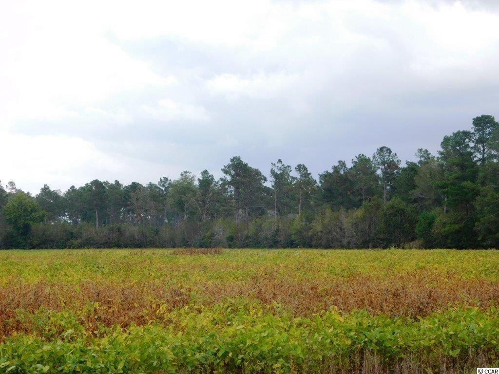 TBD Old Buck Creek Rd., Longs, SC, 29568, Not within a Subdivision Home For Sale