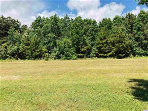 Photo of Lot 524 Middleton View Dr., Myrtle Beach, SC 29579 (MLS # 1910606)