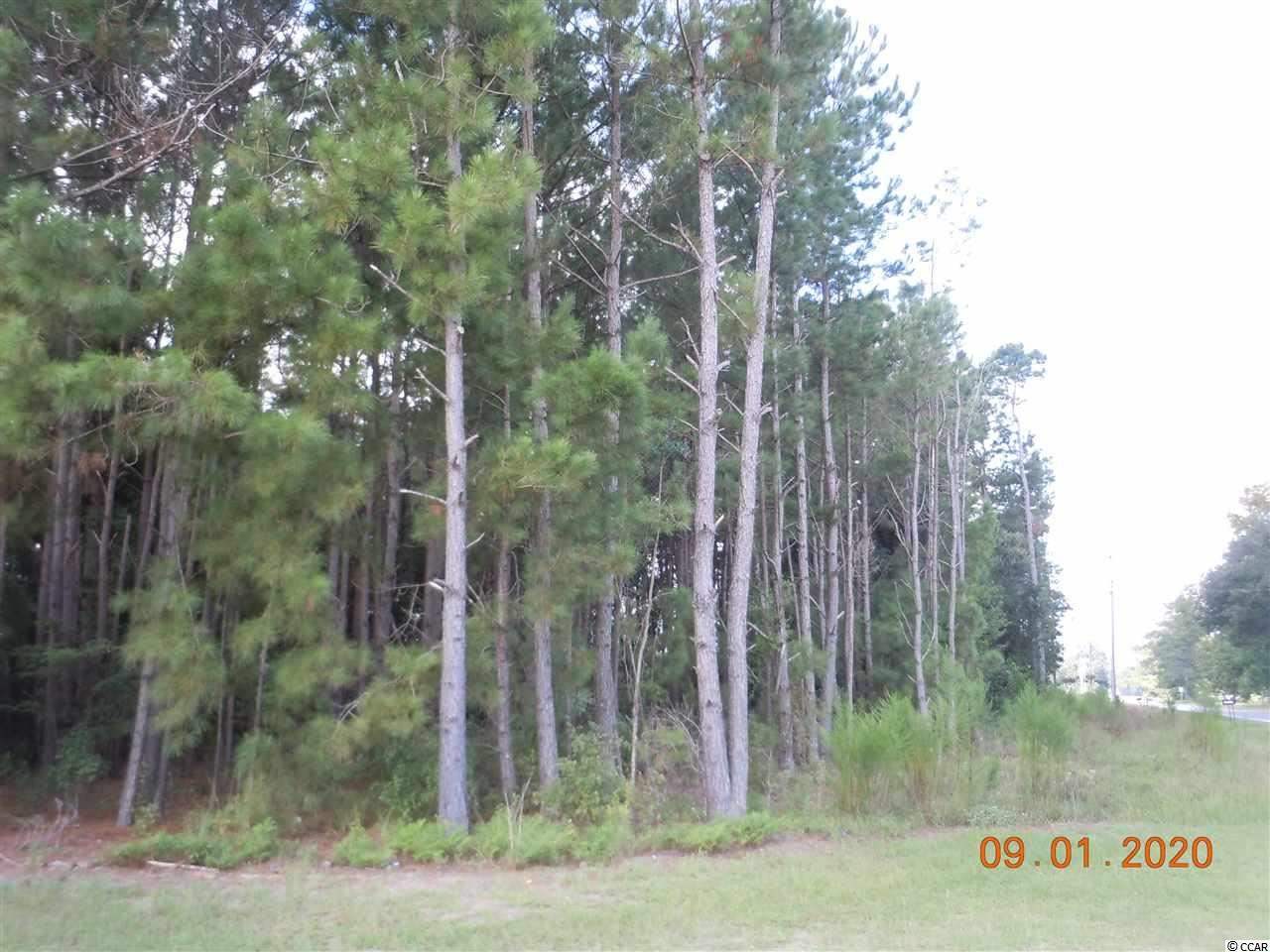 TBD Kickapoo Dr., Green Sea, SC, 29545, Not within a Subdivision Home For Sale