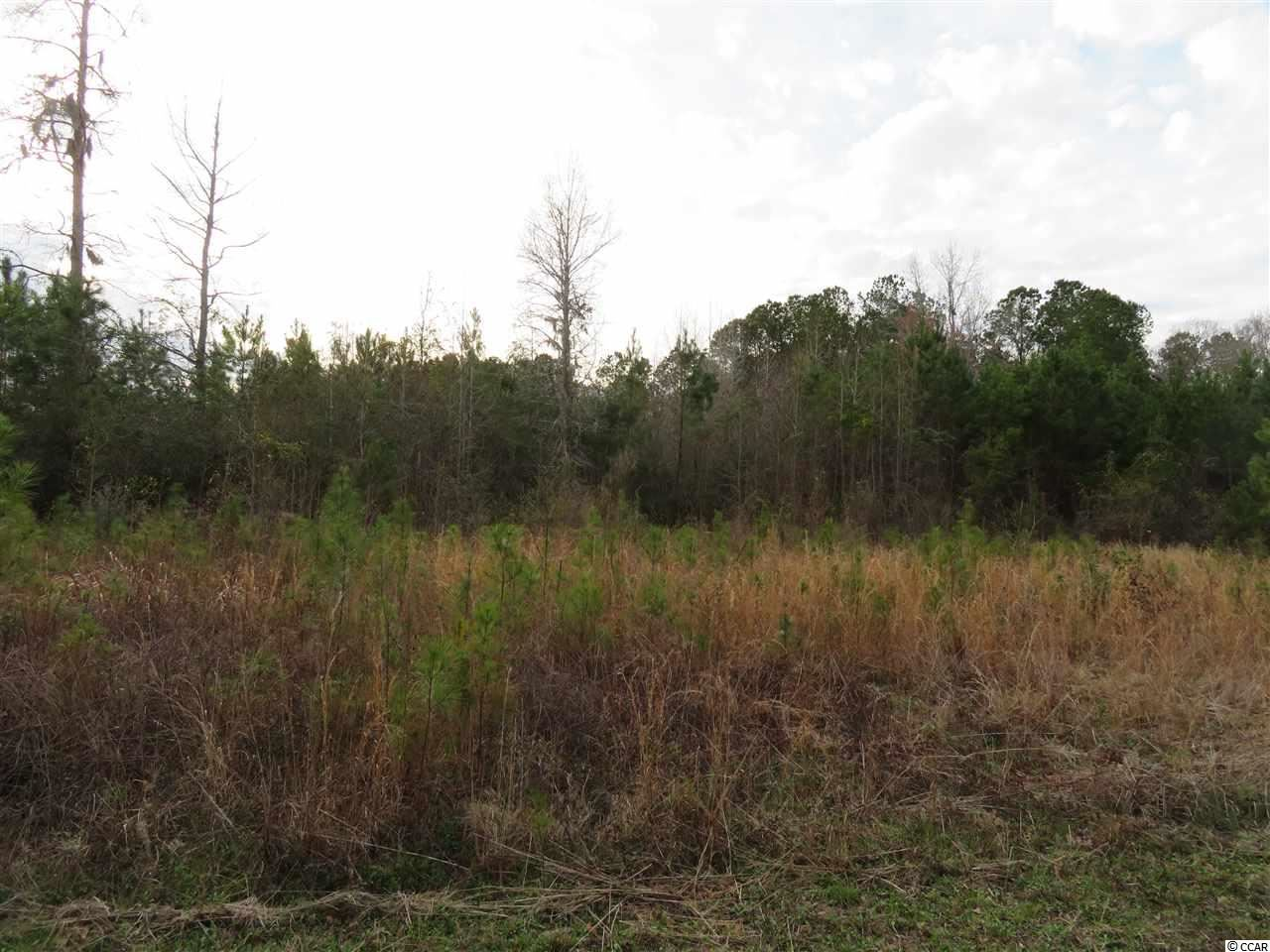 Tract 10 Mishoe Rd., Conway, SC, 29527, Bucksport Home For Sale