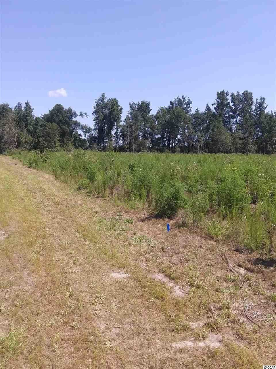 0 Dudley Rd., Latta, SC, 29565, Not within a Subdivision Home For Sale