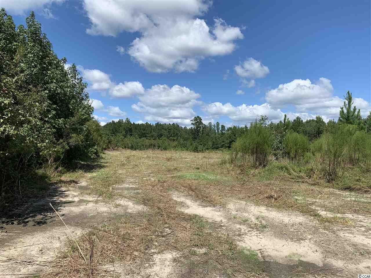 50 ac Tad Rd., Andrews, SC, 29510, Not within a Subdivision Home For Sale