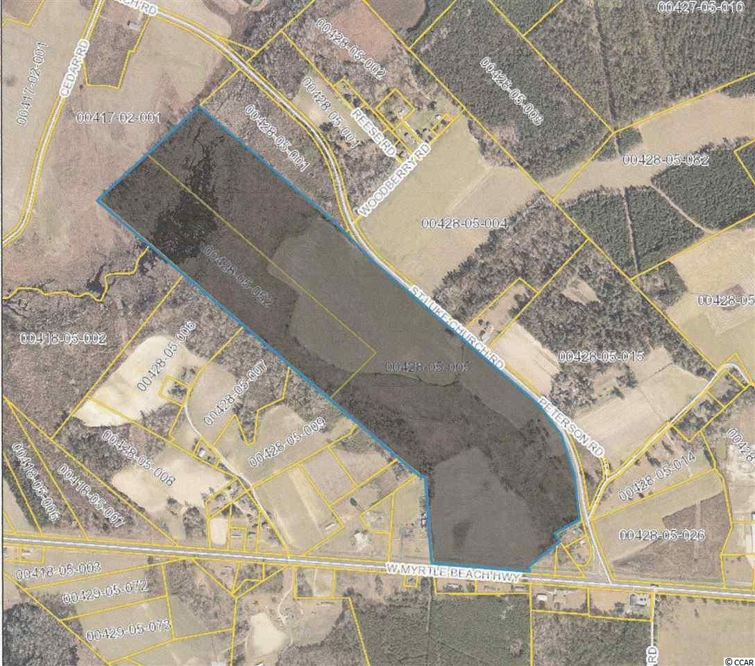 1849 Saint Luke Church Rd., Johnsonville, SC, 29555, Not within a Subdivision Home For Sale