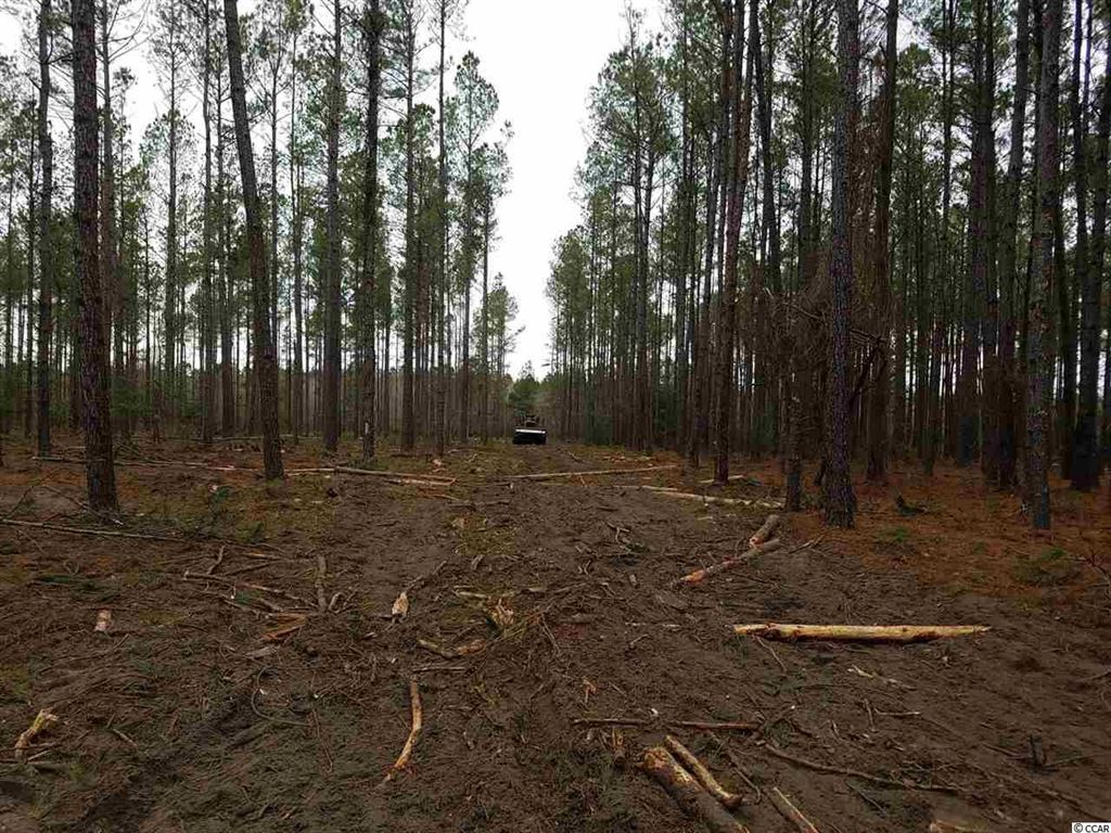 Tract 2 Tranquil Rd., Galivants Ferry, SC, 29544, Not within a Subdivision Home For Sale