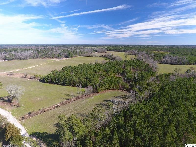 6070 Jordan Creek Rd., Nichols, SC, 29581, Not within a Subdivision Home For Sale