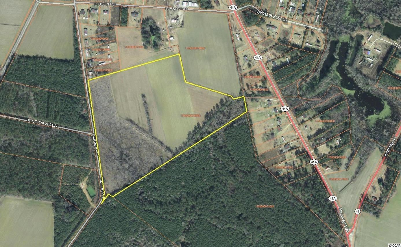 tbd Alice Ln., Marion, SC, 29571, Not within a Subdivision Home For Sale