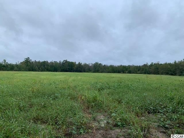 TBD Swamp Fox Hwy., Tabor City, NC, 28463, Not within a Subdivision Home For Sale