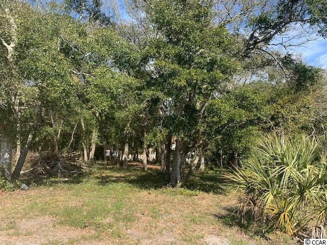 506 30th Ave. S, Atlantic Beach, SC, 29582, Town Of Atlantic Beach Home For Sale