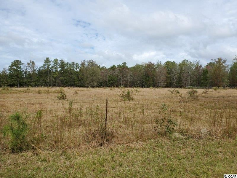tbd Old Georgetown Rd., Lake City, SC, 29560, Not within a Subdivision Home For Sale