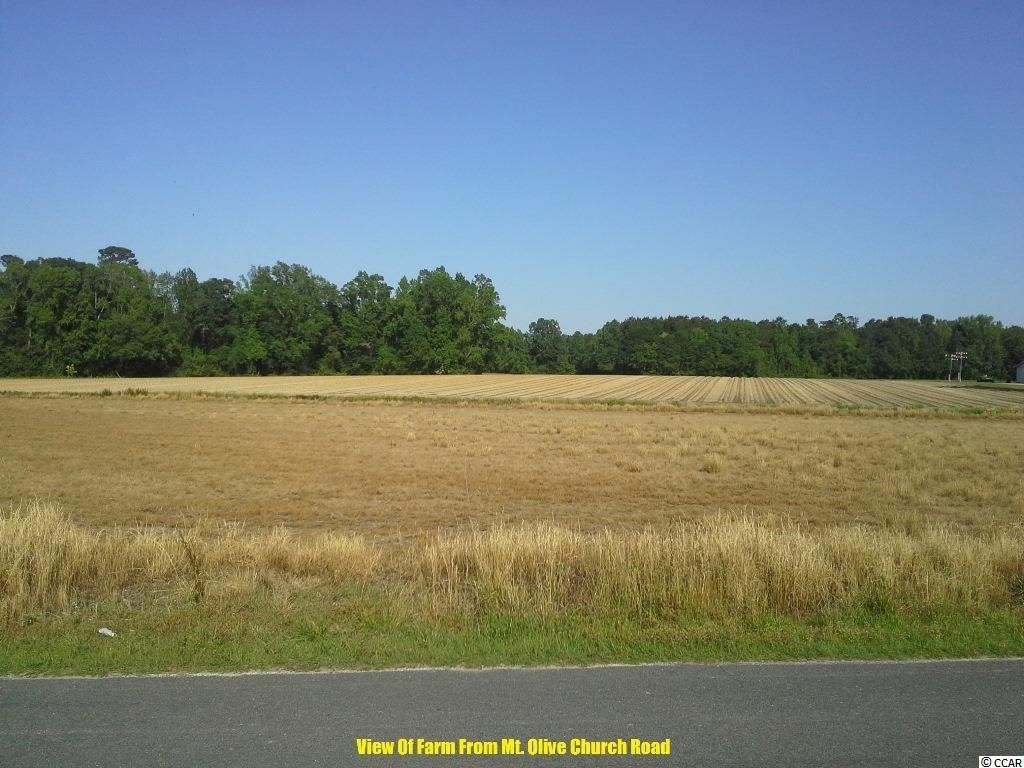 N Mount Olive Church Rd., Nichols, SC, 29581, Not within a Subdivision Home For Sale
