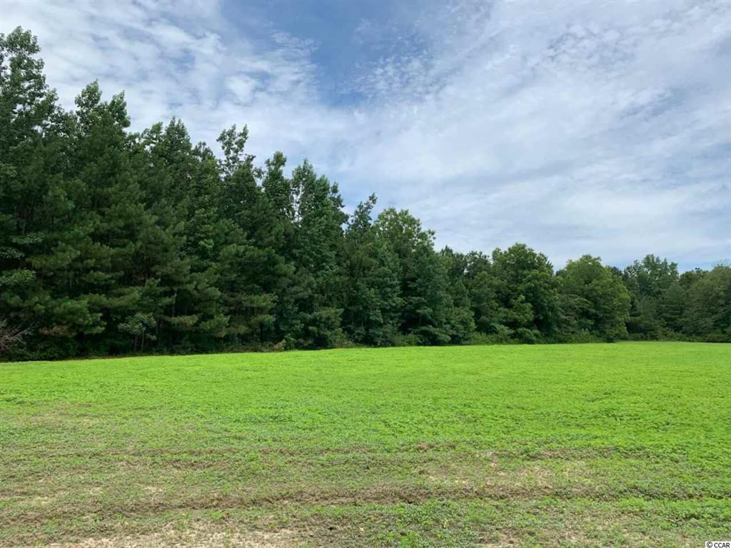 tbd McMillan Rd., Greeleyville, SC, 29056, Not within a Subdivision Home For Sale
