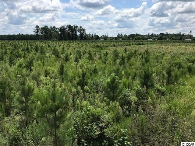 TBD Wahee Rd., Marion, SC, 29571, Not within a Subdivision Home For Sale