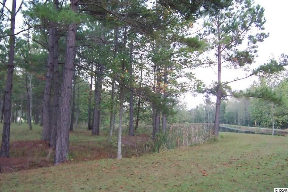 TBD Watson Heritage Rd., Loris, SC, 29569, Not within a Subdivision Home For Sale