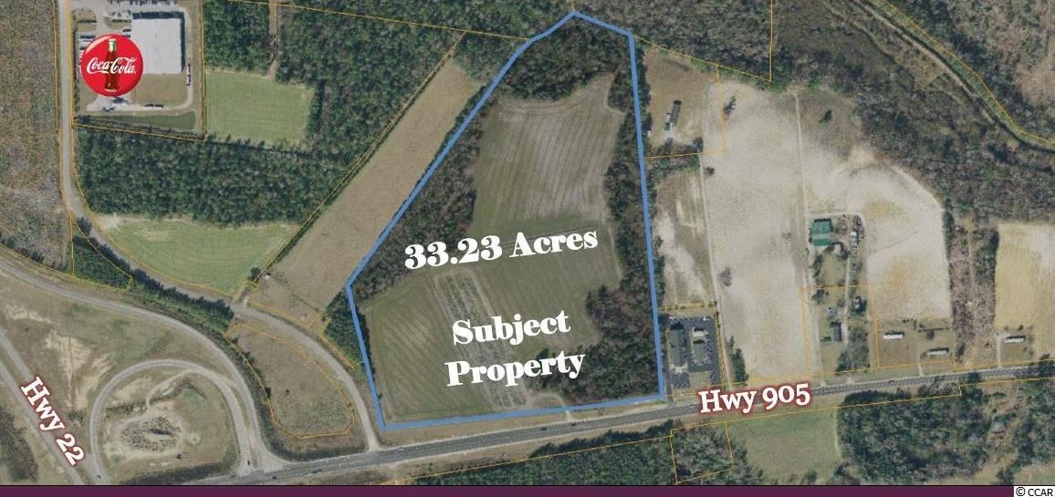 33.23 Ac Highway 905, Conway, SC, 29526, Not within a Subdivision Home For Sale