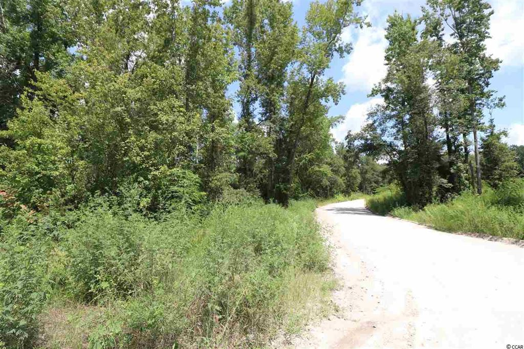 TBD Cannon Rd., Galivants Ferry, SC, 29544, Not within a Subdivision Home For Sale