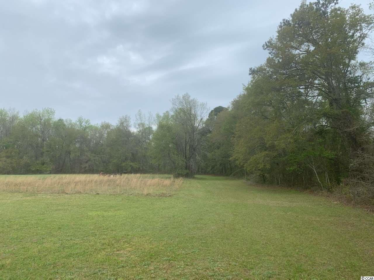 5171 Martin Luther King Jr. Hwy., Salters, SC, 29590, Not within a Subdivision Home For Sale