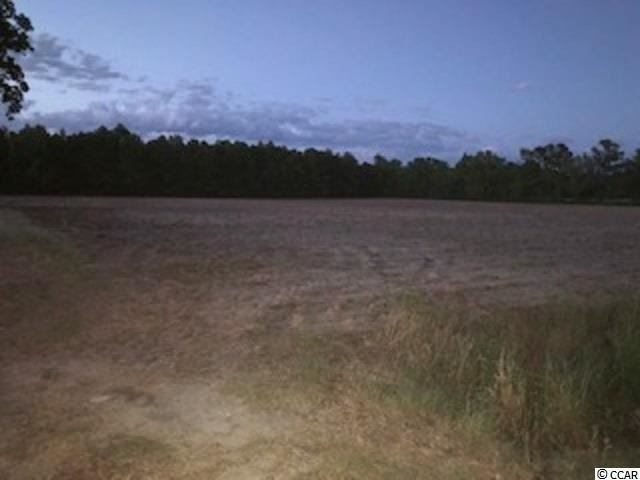 TBD Pearl Rd., Galivants Ferry, SC, 29544, Not within a Subdivision Home For Sale
