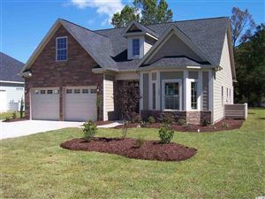 Photo of 164 Swallowtail Ct., Little River, SC 29566 (MLS # 1905794)