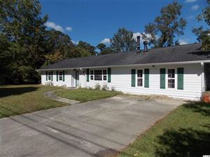 Photo of 310 Watson Dr., Conway, SC 29527 (MLS # 1922823)