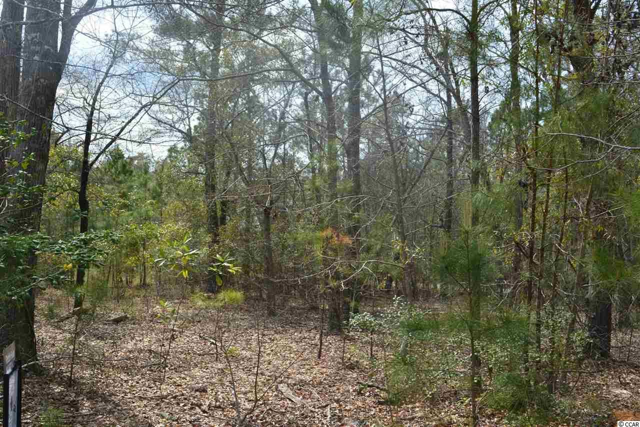 113 Warham Dr., Georgetown, SC, 29440, Harmony Home For Sale