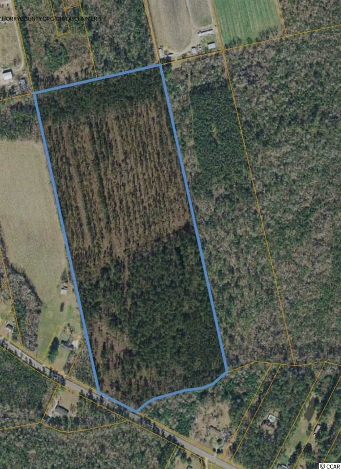Highway 319, Aynor, SC, 29511, Not within a Subdivision Home For Sale