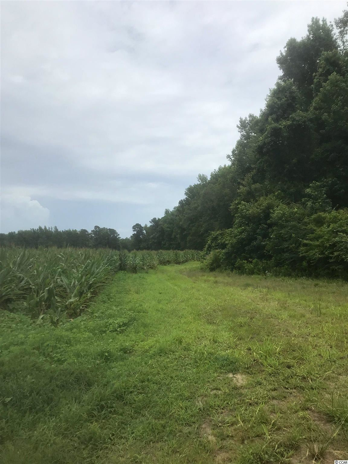 TBD Eastland Ave., Kingstree, SC, 29556, Not within a Subdivision Home For Sale