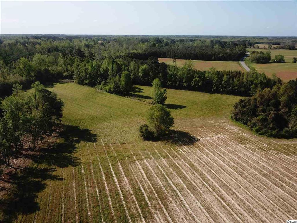 0 Olive Dr., Green Sea, SC, 29545, Not within a Subdivision Home For Sale