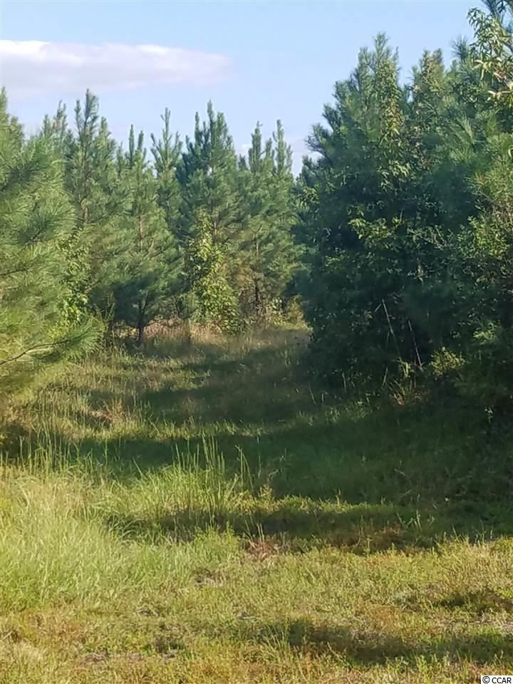 Old Georgetown Rd., Hemingway, SC, 29554, Not within a Subdivision Home For Sale