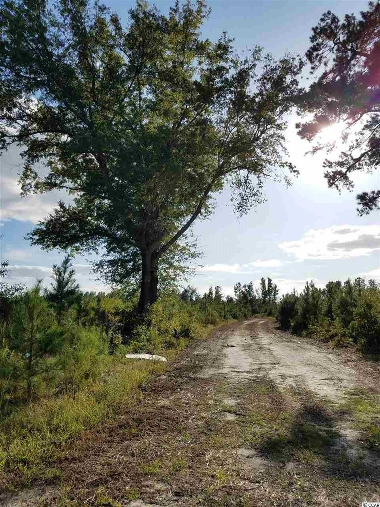 TBD Old Georgetown Rd., Hemingway, SC, 29554, Not within a Subdivision Home For Sale